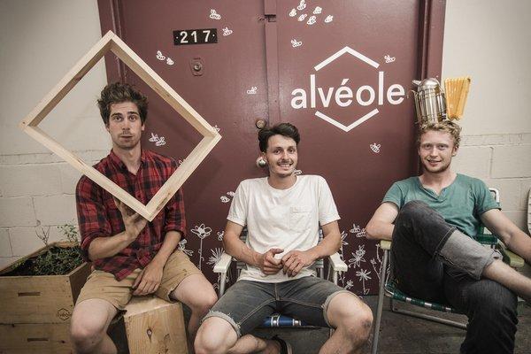 alveole team