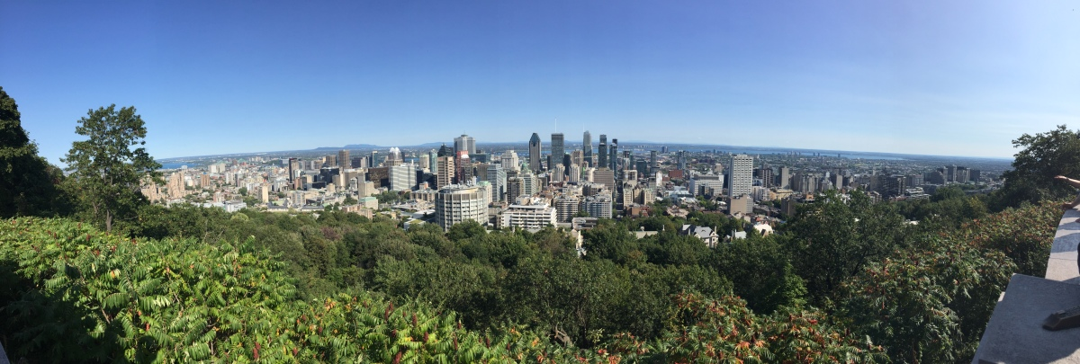 Montreal, an urban laboratory for experimenting artificialintelligence?
